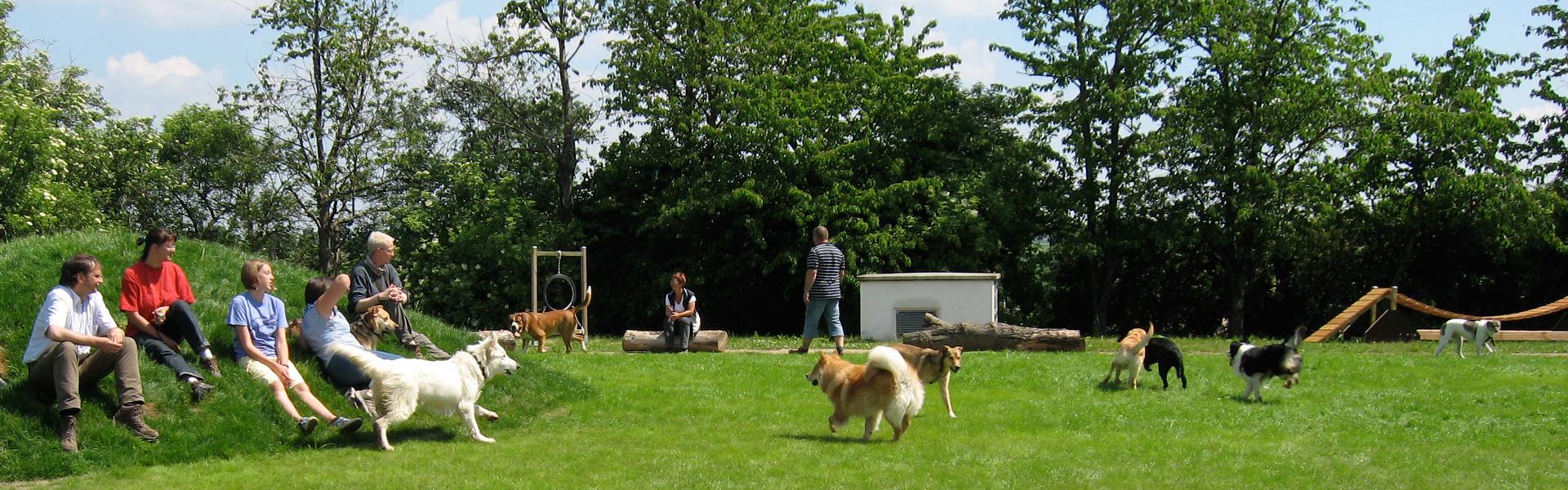 Hundespielplatz